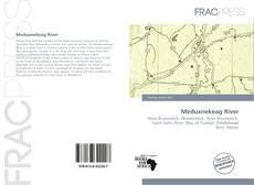 Meduxnekeag River的封面