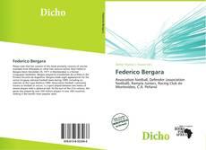 Обложка Federico Bergara