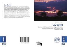 Buchcover von Lay Gayint
