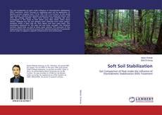 Couverture de Soft Soil Stabilization