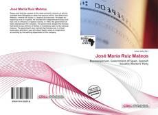 Bookcover of José María Ruiz Mateos