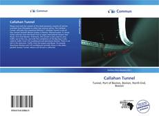 Bookcover of Callahan Tunnel