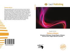 Bookcover of Gelana Abaya