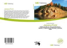 Bookcover of Jamaica Pond