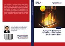 Türkiye'de Sektörlerin İstihdam, Enflasyon ve Büyümeye Etkileri kitap kapağı