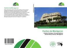 Buchcover von Canton de Montgeron
