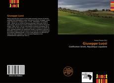 Bookcover of Giuseppe Luosi