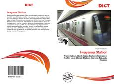 Bookcover of Iwayama Station