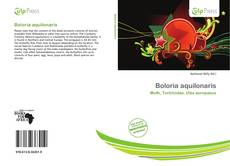 Bookcover of Boloria aquilonaris
