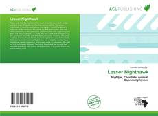 Bookcover of Lesser Nighthawk