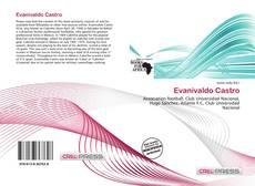 Couverture de Evanivaldo Castro