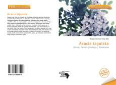 Copertina di Acacia Ligulata