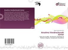 Capa do livro de Anselmo Vendrechovski Júnior