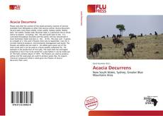 Couverture de Acacia Decurrens