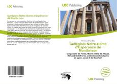 Bookcover of Collégiale Notre-Dame d'Espérance de Montbrison