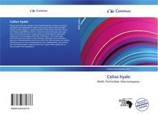 Buchcover von Colias hyale