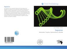 Bookcover of Saponine
