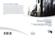 Bookcover of Kameyama Station (Hyōgo)