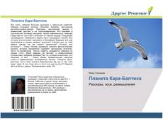 Планета Кара-Балтика的封面