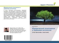Bookcover of Юридический позитивизм и правовая онтология