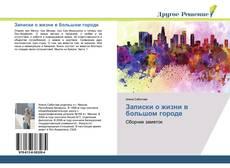 Bookcover of Записки о жизни в большом городе