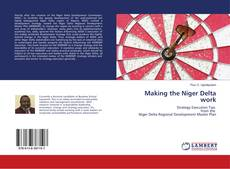 Making the Niger Delta work的封面