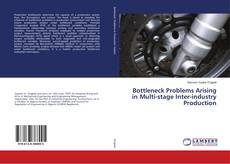 Capa do livro de Bottleneck Problems Arising in Multi-stage Inter-industry Production