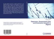 Openness, Government Size and Economic Growth in Nigeria kitap kapağı