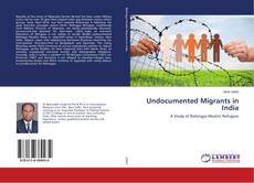 Bookcover of Undocumented Migrants in India
