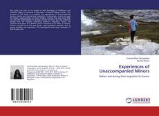 Bookcover of Experiences of Unaccompanied Minors