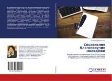 Bookcover of Социальное благополучие молодёжи