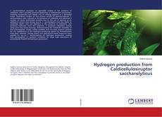 Bookcover of Hydrogen production from Caldicellulosiruptor saccharolyticus