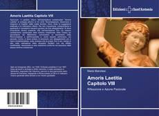 Borítókép a  Amoris Laetitia Capitolo VIII - hoz