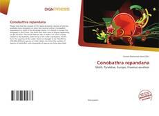 Обложка Conobathra repandana