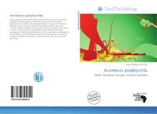 Bookcover of Acrobasis porphyrella