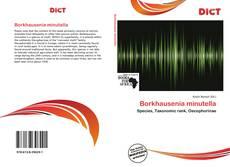Bookcover of Borkhausenia minutella