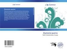 Drymonia querna的封面