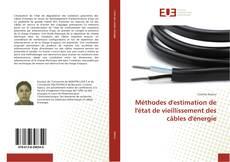 Méthodes d'estimation de l'état de vieillissement des câbles d'énergie kitap kapağı