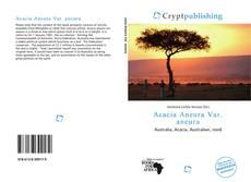 Acacia Aneura Var. aneura的封面