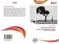 Bookcover of Acacia Imbricata