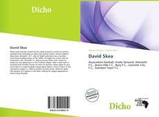 David Skea的封面