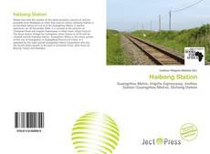 Buchcover von Haibang Station