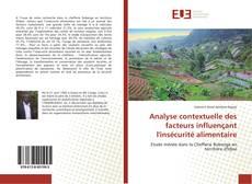 Copertina di Analyse contextuelle des facteurs influençant l'insécurité alimentaire