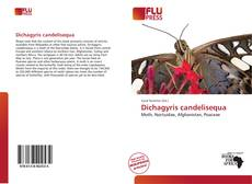 Bookcover of Dichagyris candelisequa