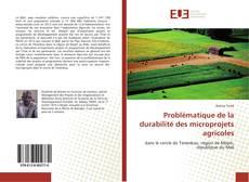 Bookcover of Problématique de la durabilité des microprojets agricoles