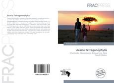 Bookcover of Acacia Tetragonophylla