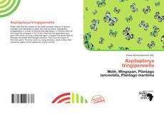 Bookcover of Aspilapteryx tringipennella
