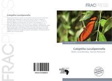Bookcover of Caloptilia cuculipennella