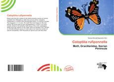 Bookcover of Caloptilia rufipennella