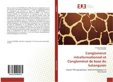 Bookcover of Conglomérat intraformationnel et Conglomérat de base du katanguien